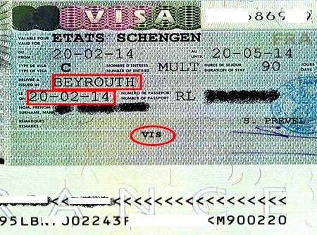 биометрическая шенгенская виза