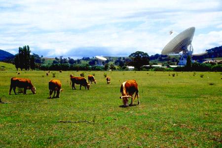 ферма в Австралии