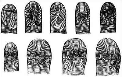 отпечатки пальцем