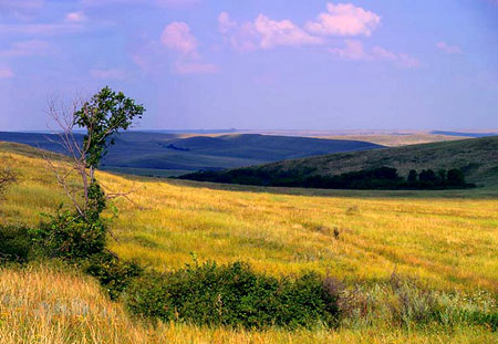 Украинская степь