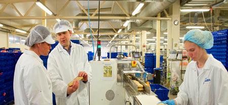 высококвалифицированные рабочие в Эстонии