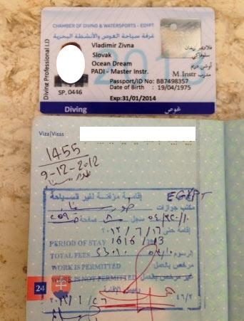 египетская карточка CDWS