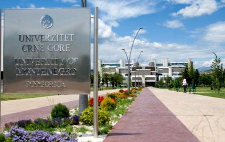 университет в Черногории