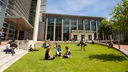 новозеландский университет