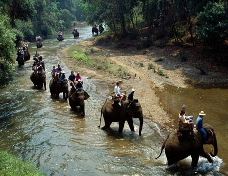 экскурсия в Таиланде