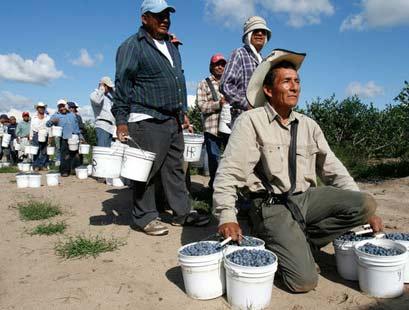 мигранты в США