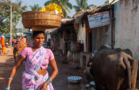 работа в Индии
