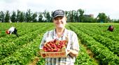 Работа и доступные вакансии в Польше