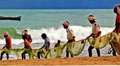 Работа и доступные вакансии в Индии