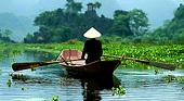 Работа и доступные вакансии во Вьетнаме