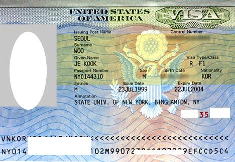 пуэрториканская виза
