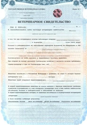 Документ для вывоза животного