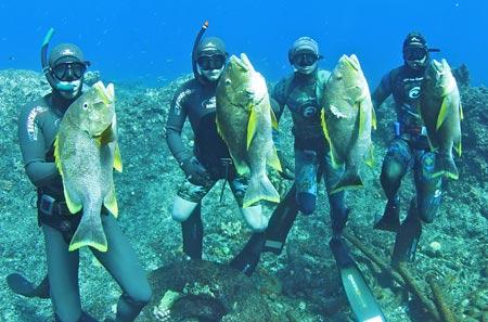 Подводная охота на Бермудах