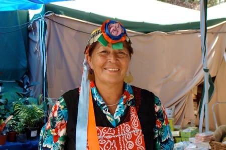 Целительница в Чили