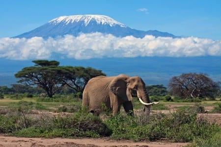 Горы Килимандажро