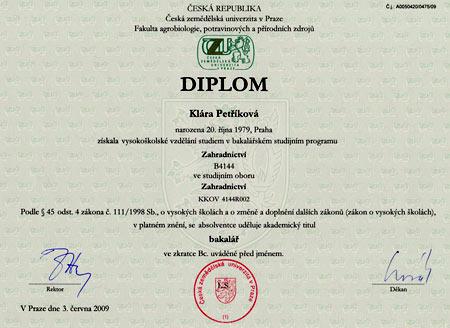 чешский диплом
