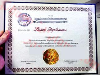 турецкий диплом