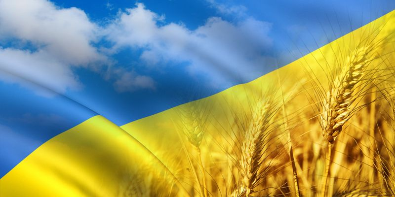 Цвета украинского флага