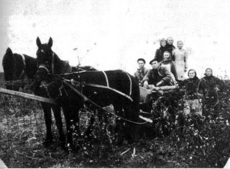 Немцы-спецпоселенцы в Казахстане. 1954 г.