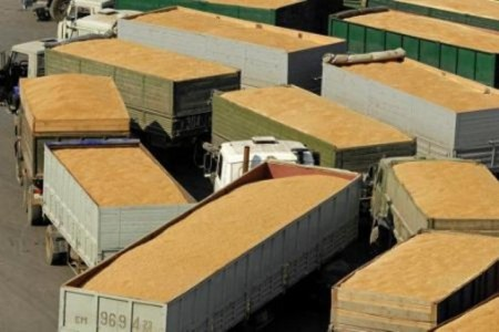 Экспорт зерна из России