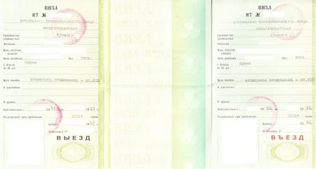 Многократная выездная виза