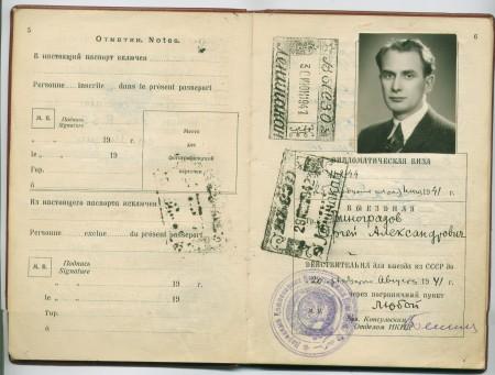 Дипломатическая выездная виза