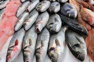 Рыба в Беларусь