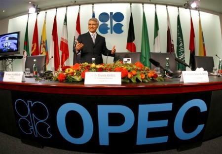 Флаги стран OPEC