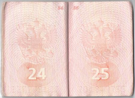 чистый паспорт