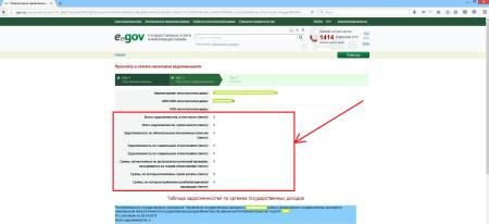 Результаты проверки на наличие налоговой задолженности на портале электронного правительства