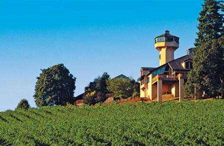 Виноделие в Черногории
