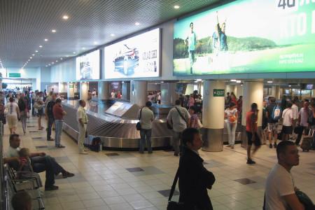 Выдача багажа в аэропорту Домодедово