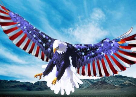 Цвета флага США