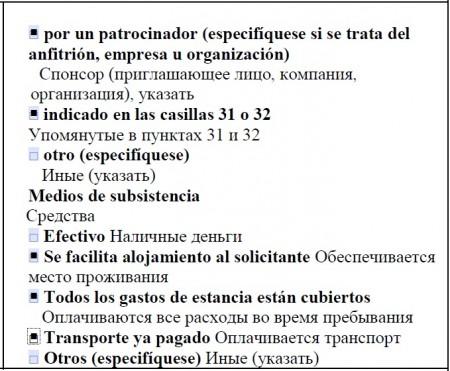 Образец заполнения анкеты на визу ребенку