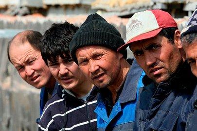 Трудоустройство мигрантов