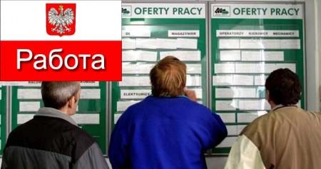Поиск вакансий в Польше
