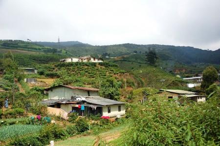 сельская местность в Индии