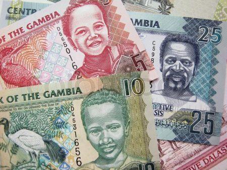 денежная единица Гамбии - даласи