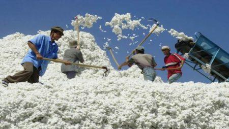 производство шерсти в Австрии