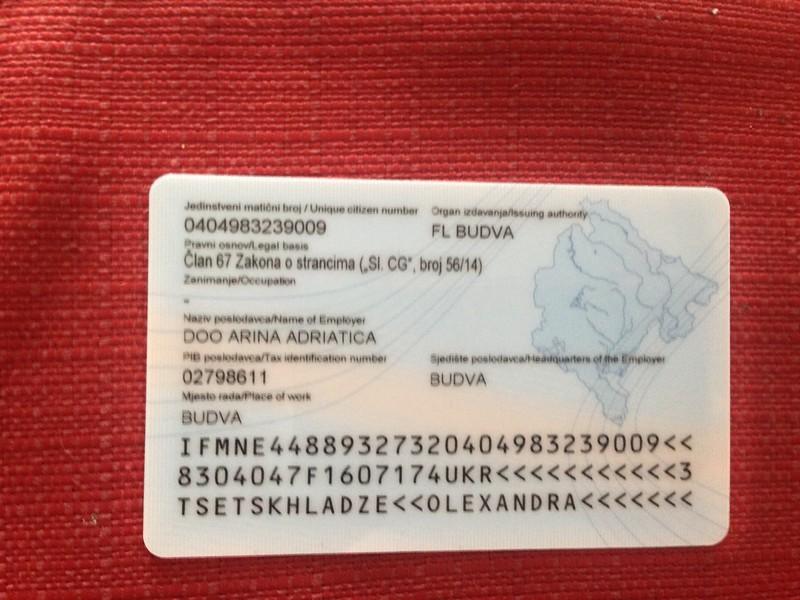 Получить внж в черногории цена