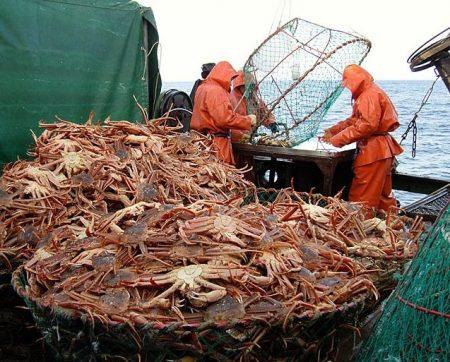 Отлов рыбы в Корее