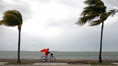 Когда лучше ехать отдыхать в Доминикану в какое время года