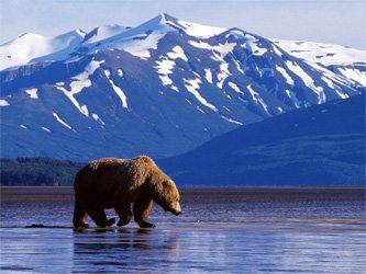 Переезд на Аляску на ПМЖ