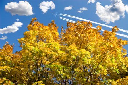 Самолёт осенью