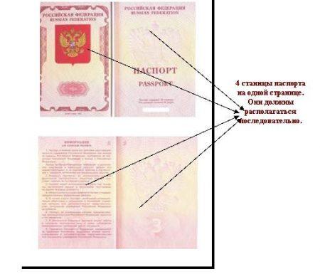 расположение страниц паспорта для ксерокопии