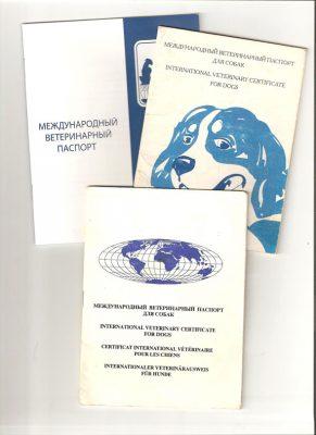 Международный прививочный паспорт