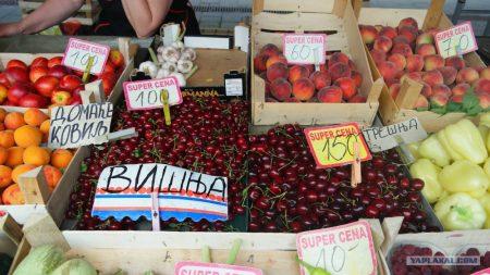 Стоимость фруктов на рынке Сербии