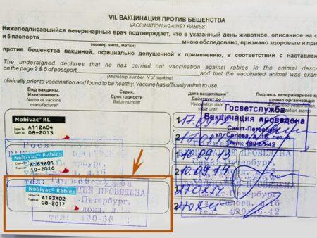 Отметка о вакцинации против бешенства в ветеринарном прививочном паспорте