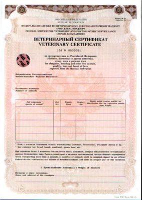 Так выглядит ветеринарный сертификат для ввоза/вывоза животных