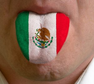 Мексиканский язык